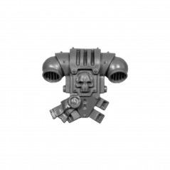 Back Pack D Warhammer Grey Knighs bitz