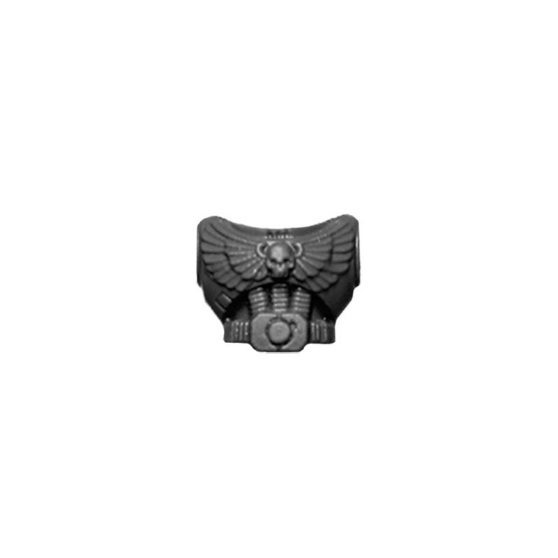Torso with Skull and Eagle A Warhammer 40k Space Marines Command Squad bitz